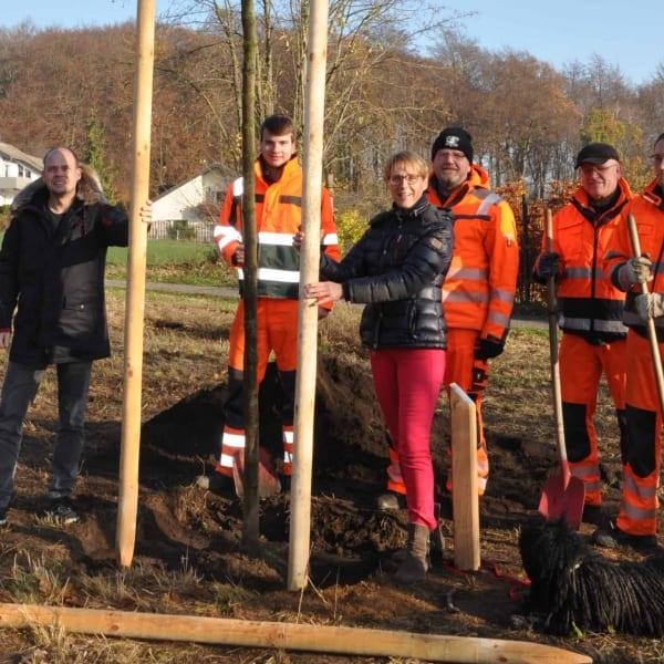 Stadtbaumpatenschaft für Spitzahorn übernommen | PLAN.CONCEPT